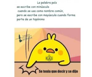 Las MAYÚSCULAS Meme