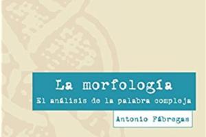 La morfología Análisis de la palabra compleja