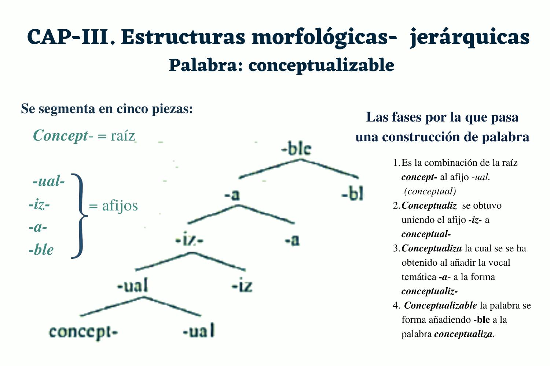 Estructura morfológica jerárquica