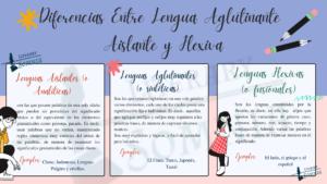 Infografías de las lengua Aglutinante, Aislante y Flexiva
